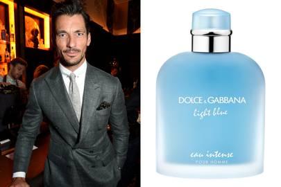 David Gandy, model, picks Light Blue by Dolce & Gabbana