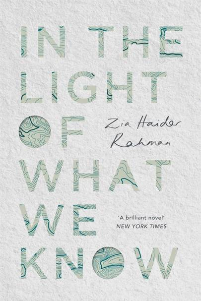 In The Light Of What We Know, by Zia Haider Rahman