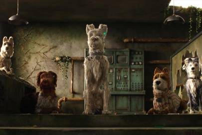 Isle of Dogs - in UK cinemas from Friday 30 March