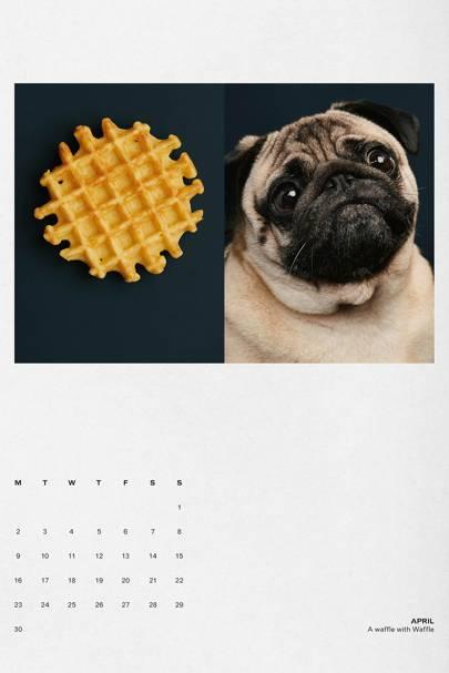 The Gourmand Dog Eat Dog calendar
