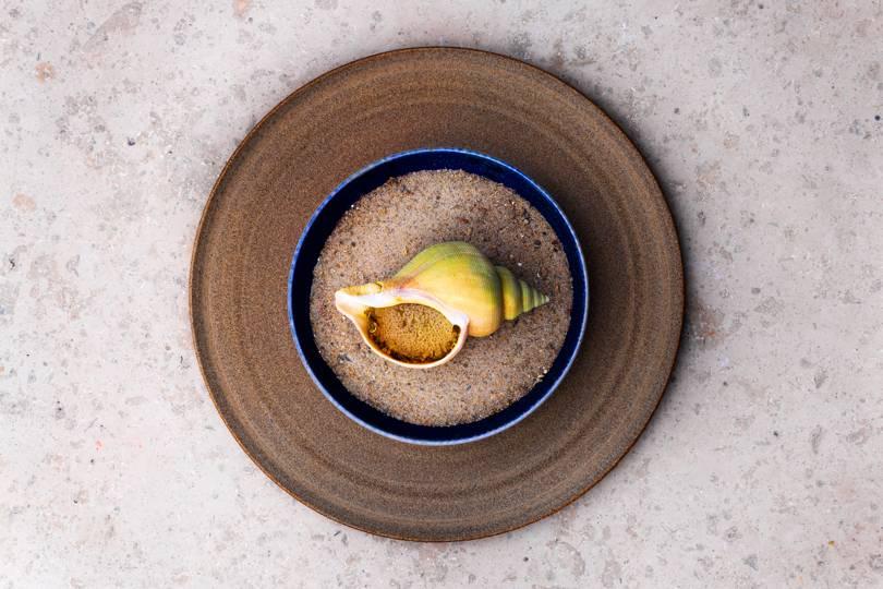 Dish at Noma Restaurant