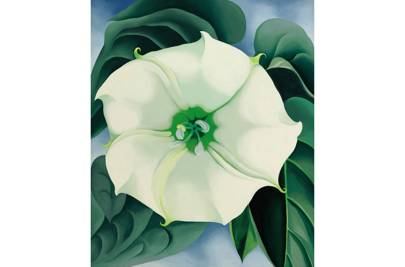 Georgia O'Keefe's Jimson Weed/White Flower No. 1.