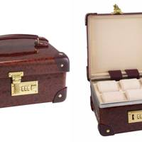 Globe-trotter watch case