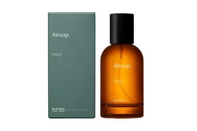 Hwyl by Aesop