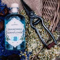 The Old Curiosity Distillery gin