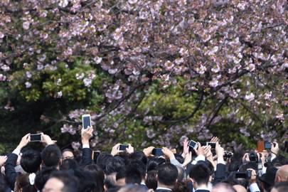 Why Japan is no longer a beautiful secret
