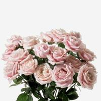 Flowers from FLOWERBX