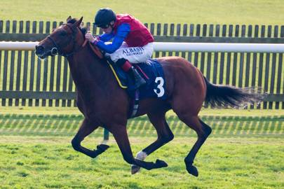 Stradivarius plays Big Orange like a fiddle in Goodwood Cup