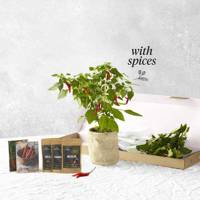 The Chef's Chilli Hamper by Bloom and Wild