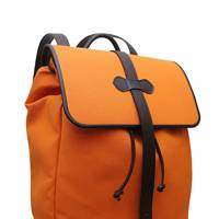 Pickett backpack