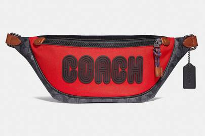 Bag by Coach