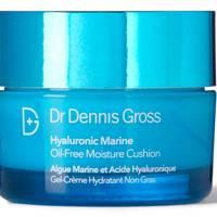Hyaluronic Marine Oil-Free Moisture Cushion by Dr Dennis Gross