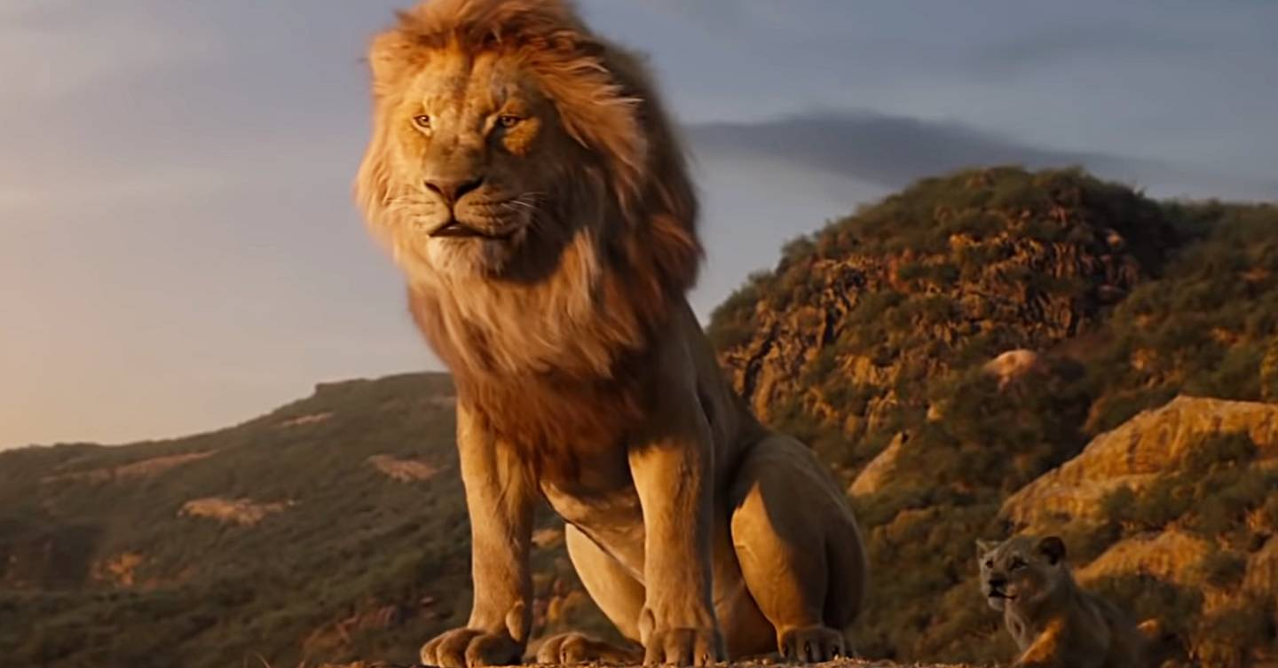 the lion king 2019  u2013 disney releases the first full